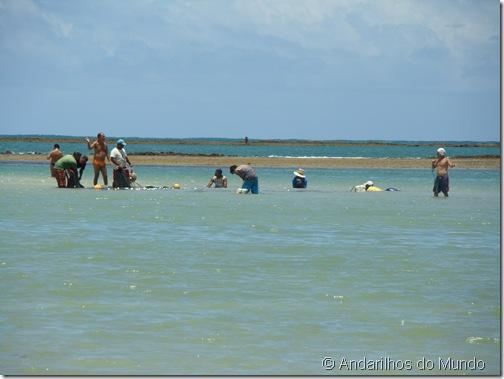 Praia de São Miguel dos Milagres Alagoas Pescadores