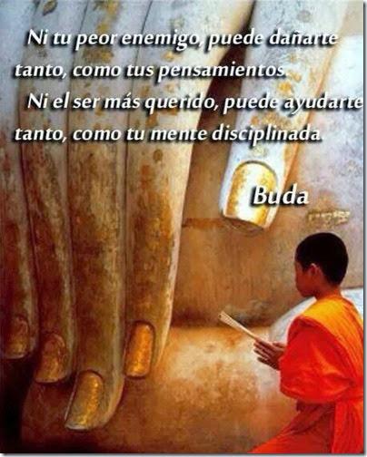 frases para meditar (3)