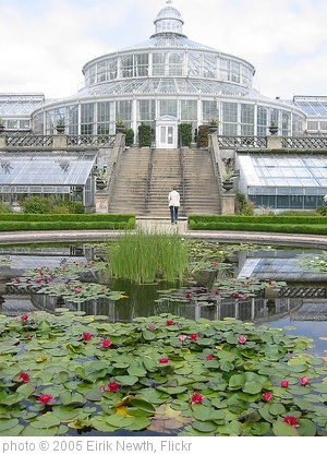 'The Botanical gardens, Copenhagen' photo (c) 2005, Eirik Newth - license: http://creativecommons.org/licenses/by/2.0/