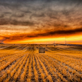 Catching Fire by Dustin Olsen - Landscapes Sunsets & Sunrises ( clouds, field, sunset, hay, farmland, summer, smoke, fire )