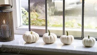Fall Living Room Decoration White Pumpkins