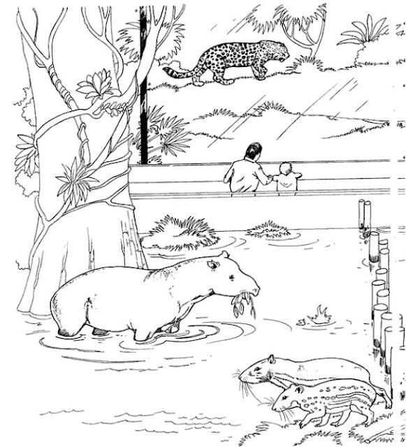 Perfecto Página Para Colorear Zoológico Viñeta - Ideas Para Colorear ...