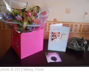 '078/366: Mother's Day' photo (c) 2012, Mikey - license: http://creativecommons.org/licenses/by/2.0/