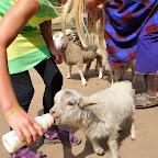 Flaschenkinder in Mufindi © Foto: Marco Penzel | Outback Africa Erlebnisreisen