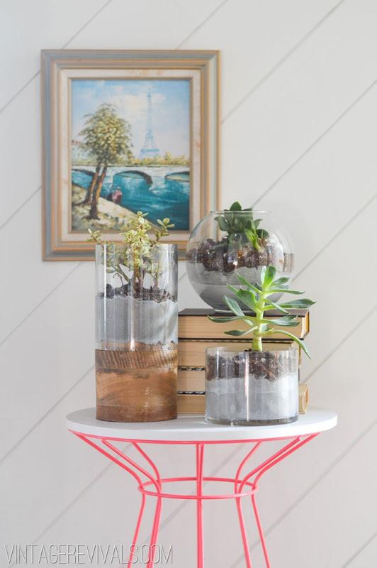 Concrete and Glass Succulent Planter TutorialVintage Revivals