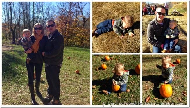 lincoln pumpkin patch