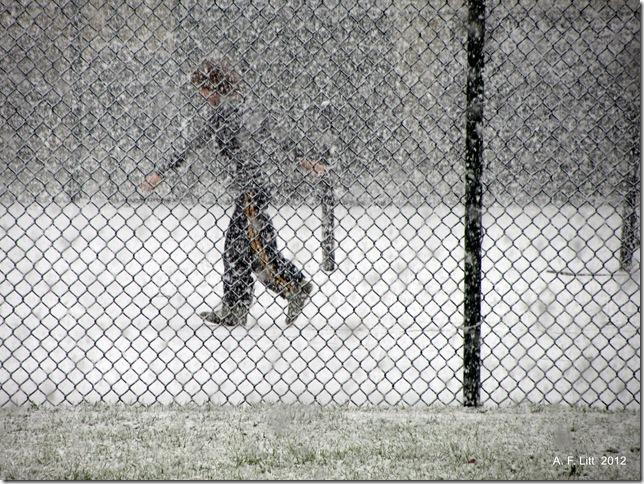 Snow.  Holly Ridge.  Gresham, Oregon.  January 15, 2012.