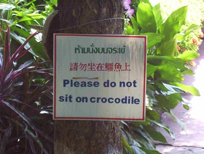 please.dont.sit.on.crocodile