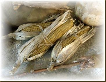 Chennile Corn