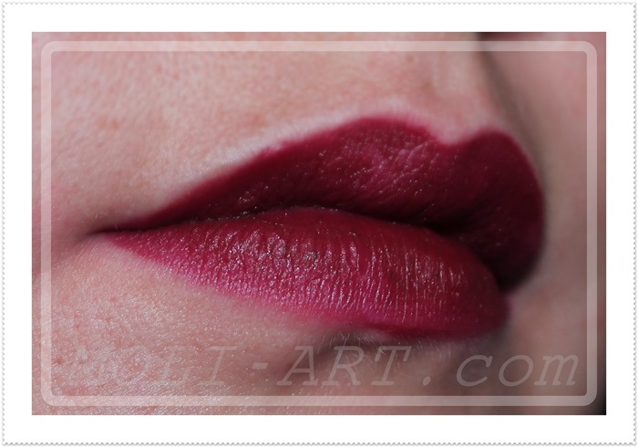 labial-cramberry-sleek-makeup