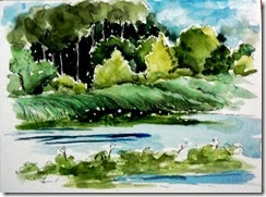 lotus across the river 7 13