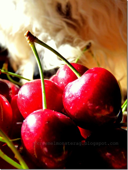 with me is good cherry eating (2)