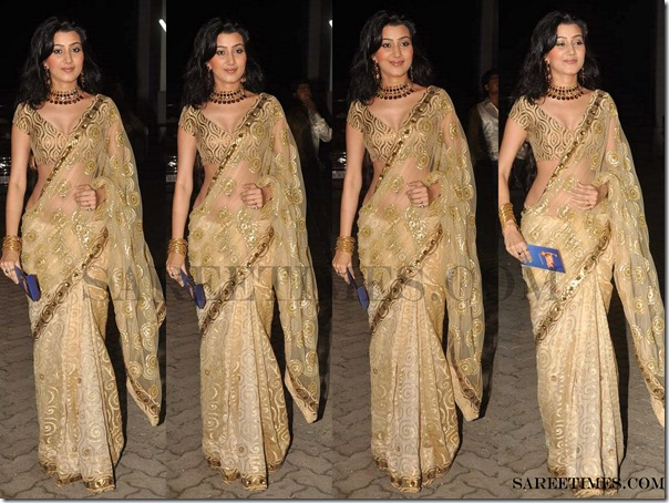 Designer_Saree_Telly_Chakkar_Awards_2011 (4)