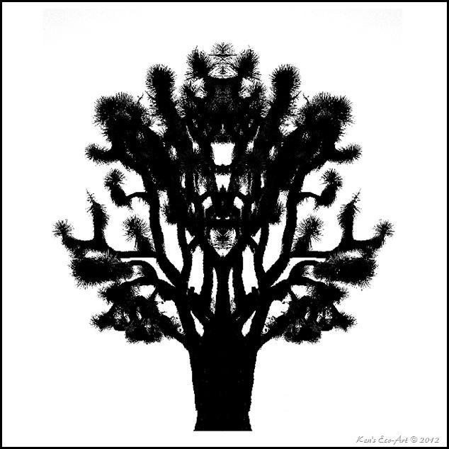 Desert Inkblot