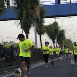 Pet Express Doggie Run 2012 Philippines. Jpg (49).JPG