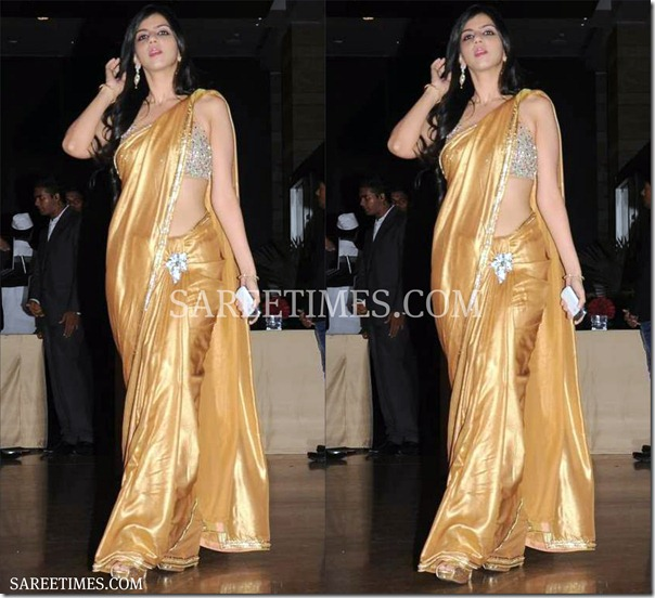 Nishika_Lulla_Gold_Saree