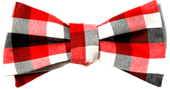 Jane-Bowtie-V1.0-small-web