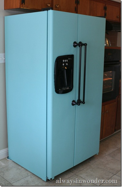 Turquoise_painted_refrigerator (2)
