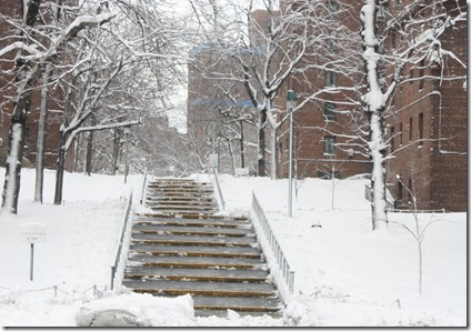 parkchester-bronx-ny-snow