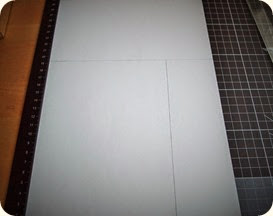 P7304168 (2)