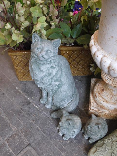 garden_cats