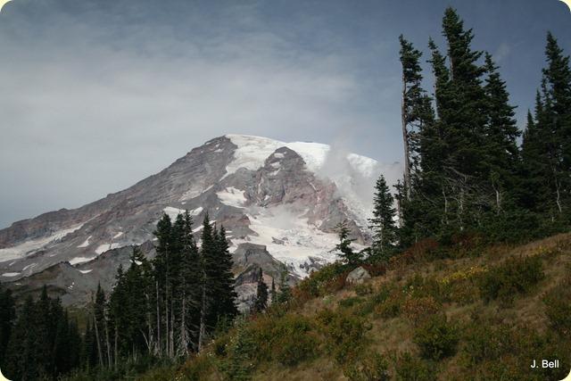 Mt. Rainier Nat'l Park