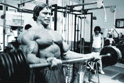 Arnold Cheat Curl