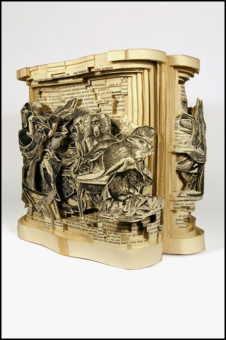 Brian Dettmer sculpteur de livres (30)