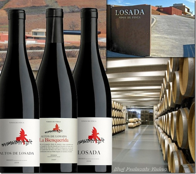 finca-losada-blog-peninsula-vinhos