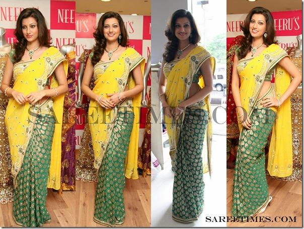 Hamsa_Nandhi_Designer_Saree