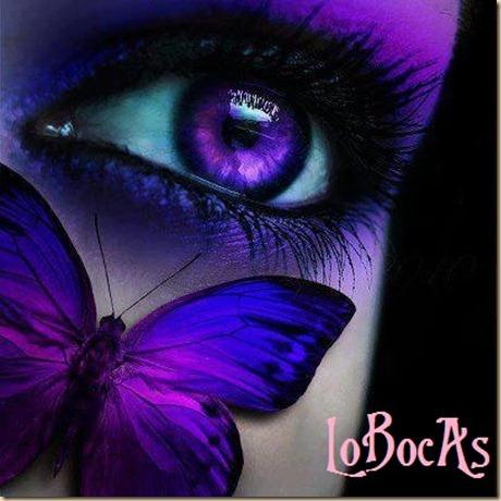 miradas-LoBocAs-01