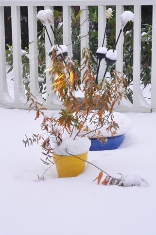 first_snow_2012