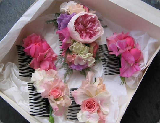 551882_10151753580756992_1671082477_n love lily