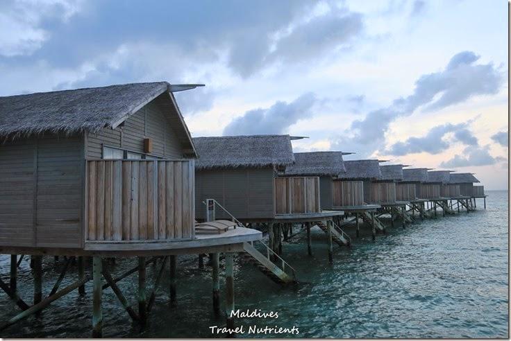 馬爾地夫 Centara渡假村 (57)