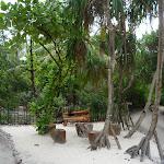 Maldivi (2).jpg
