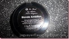 Blonde Ambition (4)