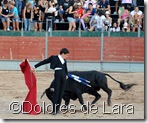 ©Dolores de Lara (92)
