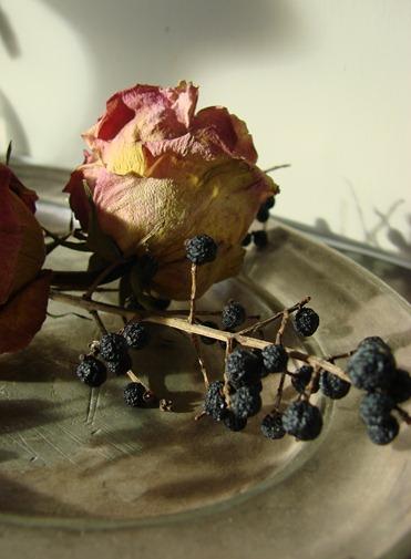 bloemen tot 2011 (76)