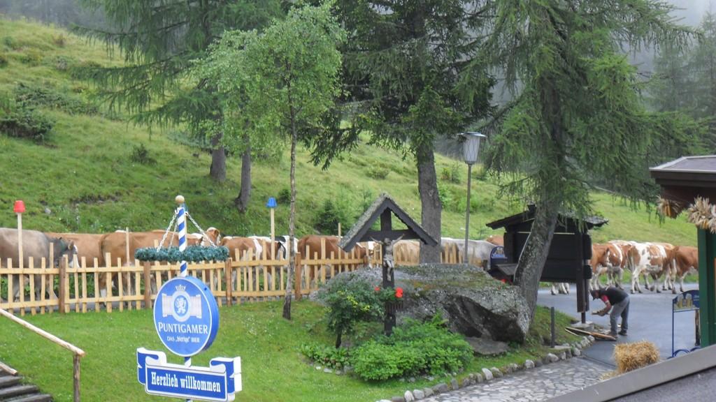 2011 That´s Tours Karinthië 032.JPG