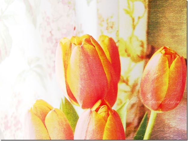 Tulips_Vellum