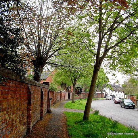 a tree lined mowsley street