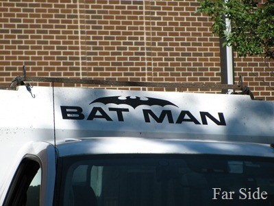 The Bat Man