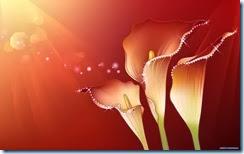 flores-flowers-flor-fleurs-490