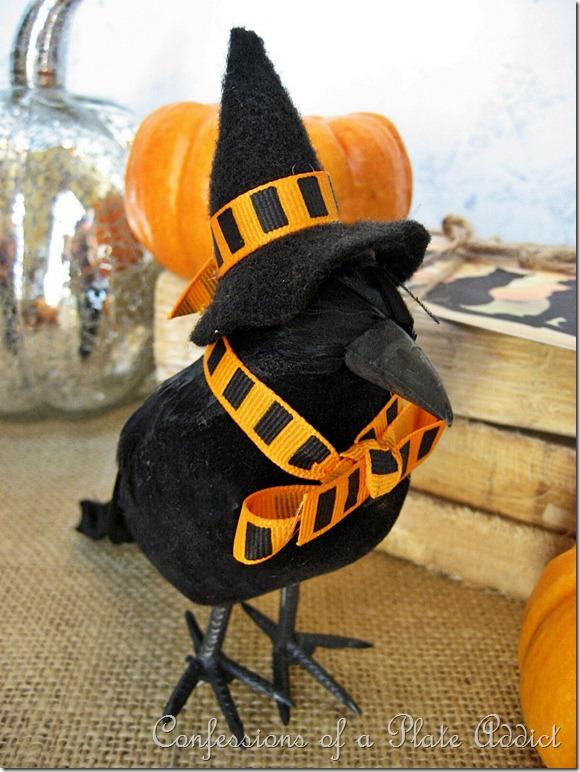Orange Witchy Crow