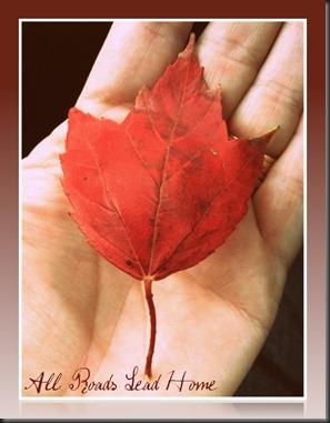Fall Leaf 2011 ARLH