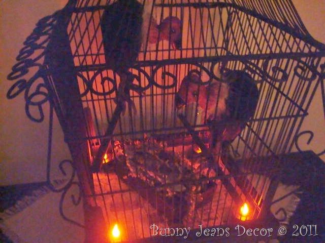 Buzzard Cage