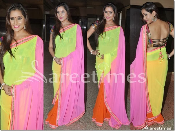 Tricolor_Georgette_Saree