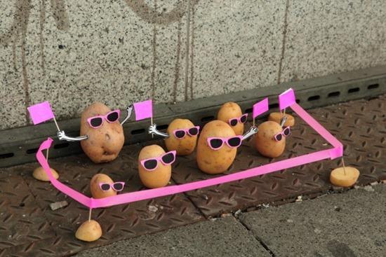 Batatas de Peter Pink 02