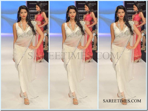 Jashn_IIJW_Saree (3)