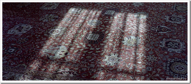 camille claudel 1915 dummont emmerdeur_55